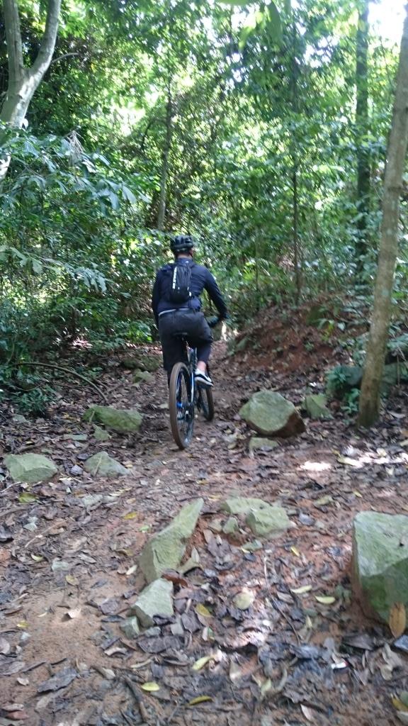 Kebanyakan trek harus melalui rintangan akar dan batu-batuan.
